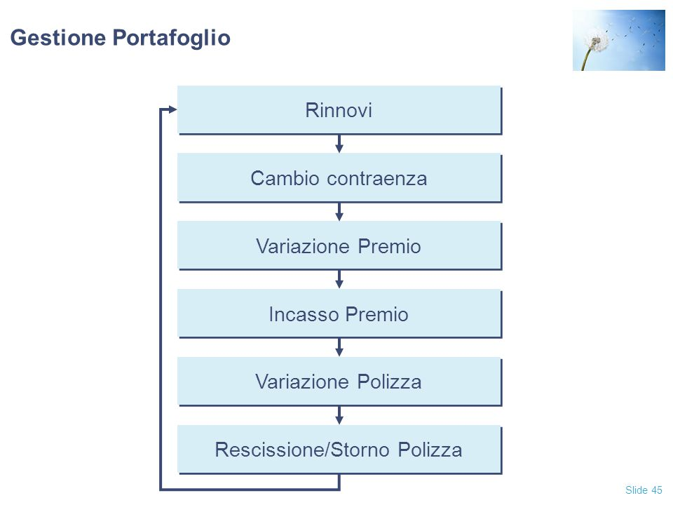 Slide 45 Gestione Portafoglio Rinnovi Cambio contraenza Variazione Premio Incasso Premio Variazione Polizza Rescissione/Storno Polizza