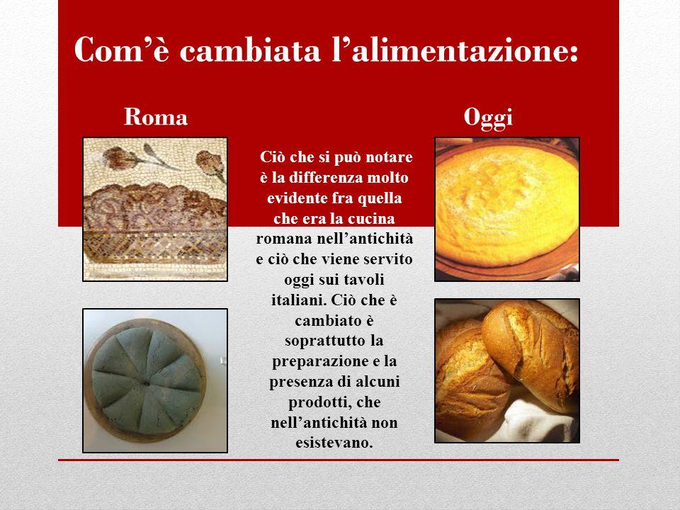 Com'è cambiata l'alimentazione: RomaOggi Ciò che si può notare è la differenza molto evidente fra quella che era la cucina romana nell'antichità e ciò che viene servito oggi sui tavoli italiani.