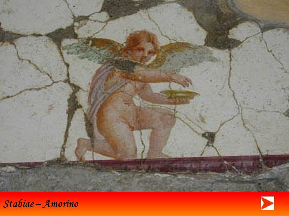 Stabiae – particolari di altri affreschi
