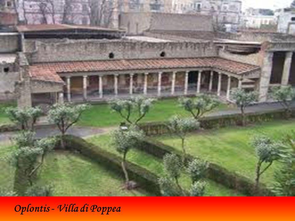 Oplontis corrispondente all'adierna Torre Annunziata, in Campania, era una città romana sepolta dall'eruzione del Vesuvio nel 79 d.C. Dell'antica Oplo
