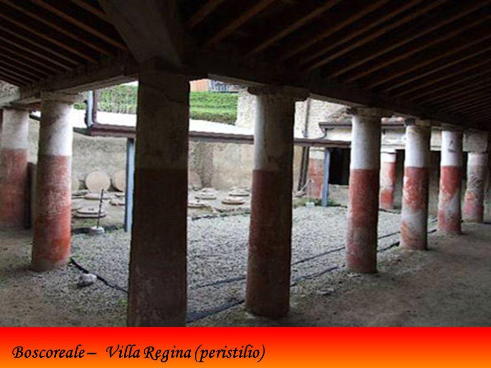 Recenti ritrovamenti a Boscoreale, villaggio (pagus) di Pompei, dove furono edificate aziende agricole che sfruttavano il fertile terreno alle pendici