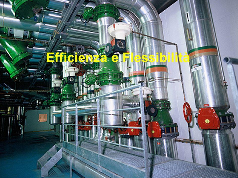 Schneider Electric 13 - Marketing VSD – April 2009 Efficienza e Flessibilità