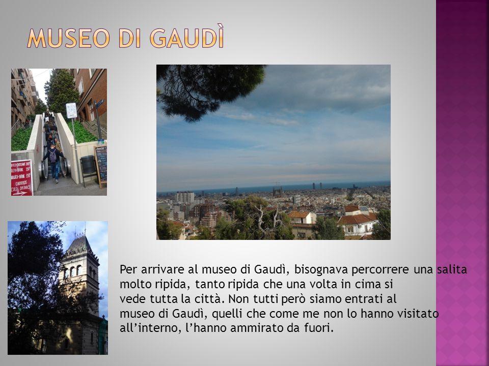 Per arrivare al museo di Gaudì, bisognava percorrere una salita molto ripida, tanto ripida che una volta in cima si vede tutta la città.
