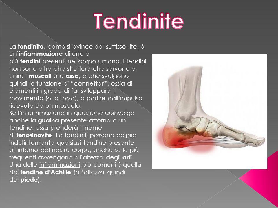 La tendinite, come si evince dal suffisso -ite, è un' infiammazione di uno o più tendini presenti nel corpo umano. I tendini non sono altro che strutt