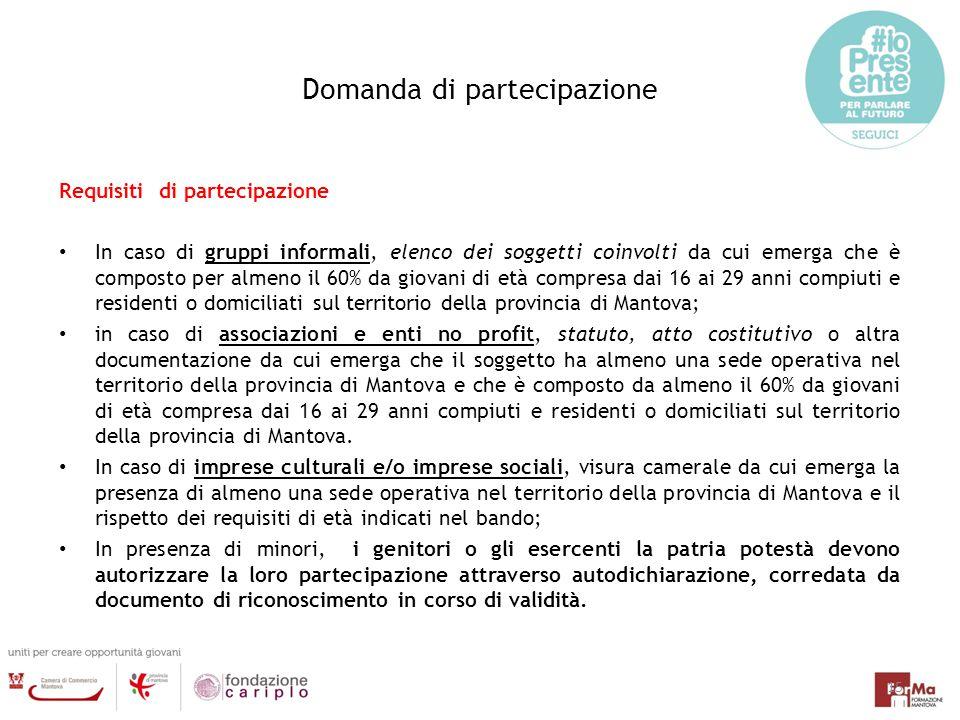 Domanda di partecipazione Requisiti di partecipazione In caso di gruppi informali, elenco dei soggetti coinvolti da cui emerga che è composto per alme