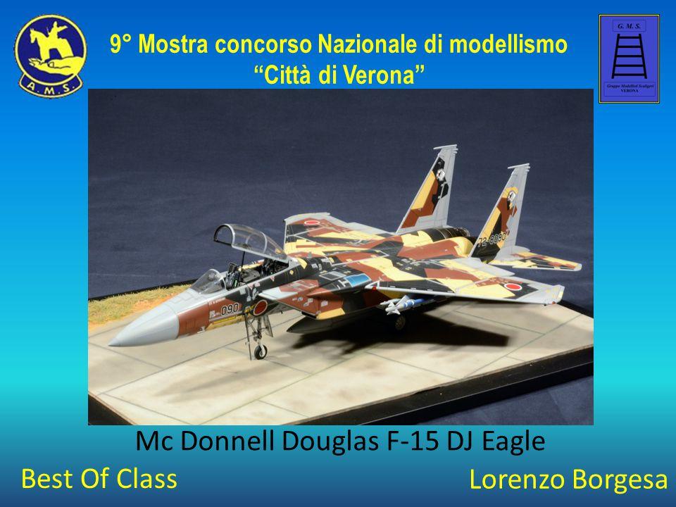 """Lorenzo Borgesa Mc Donnell Douglas F-15 DJ Eagle 9° Mostra concorso Nazionale di modellismo """"Città di Verona"""" Best Of Class"""