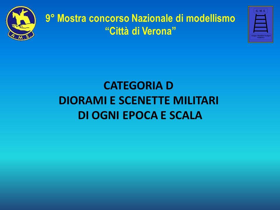 Denis Pozza DAK BergeElefant - Tunisia 1943 9° Mostra concorso Nazionale di modellismo Città di Verona Speciale