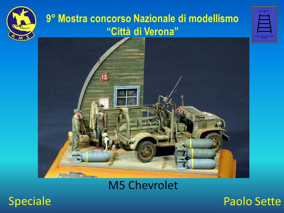 Stefano Albertini Wet and dry 9° Mostra concorso Nazionale di modellismo Città di Verona Bronzo