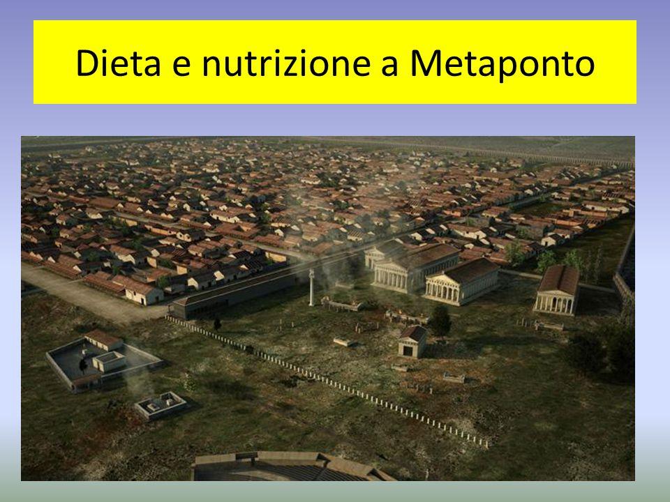 Com' era il paesaggio del metapontino nel VII a.c.