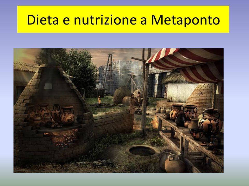 I coloni greci che si insediarono a Metaponto riprodussero, con pochi adattamenti, i modelli agricoli tipici della madre patria ed anche le abitudini alimentari.