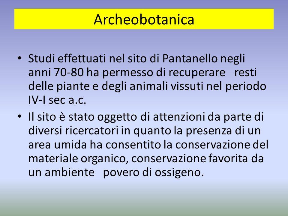 Archeobotanica Studi effettuati nel sito di Pantanello negli anni 70-80 ha permesso di recuperare resti delle piante e degli animali vissuti nel perio