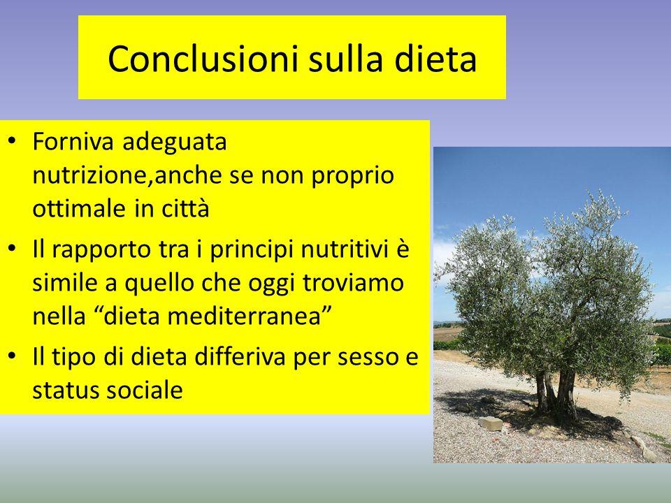 Conclusioni sulla dieta Forniva adeguata nutrizione,anche se non proprio ottimale in città Il rapporto tra i principi nutritivi è simile a quello che