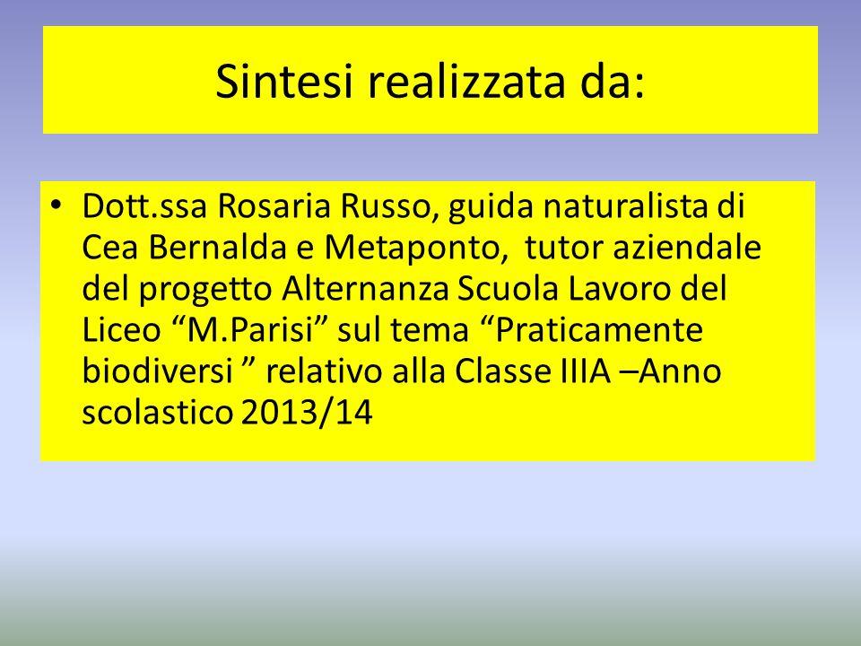 Sintesi realizzata da: Dott.ssa Rosaria Russo, guida naturalista di Cea Bernalda e Metaponto, tutor aziendale del progetto Alternanza Scuola Lavoro de