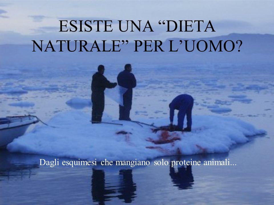 """ESISTE UNA """"DIETA NATURALE"""" PER L'UOMO? Dagli esquimesi che mangiano solo proteine animali..."""