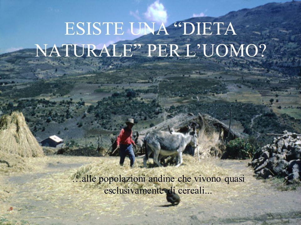 """ESISTE UNA """"DIETA NATURALE"""" PER L'UOMO? …alle popolazioni andine che vivono quasi esclusivamente di cereali..."""