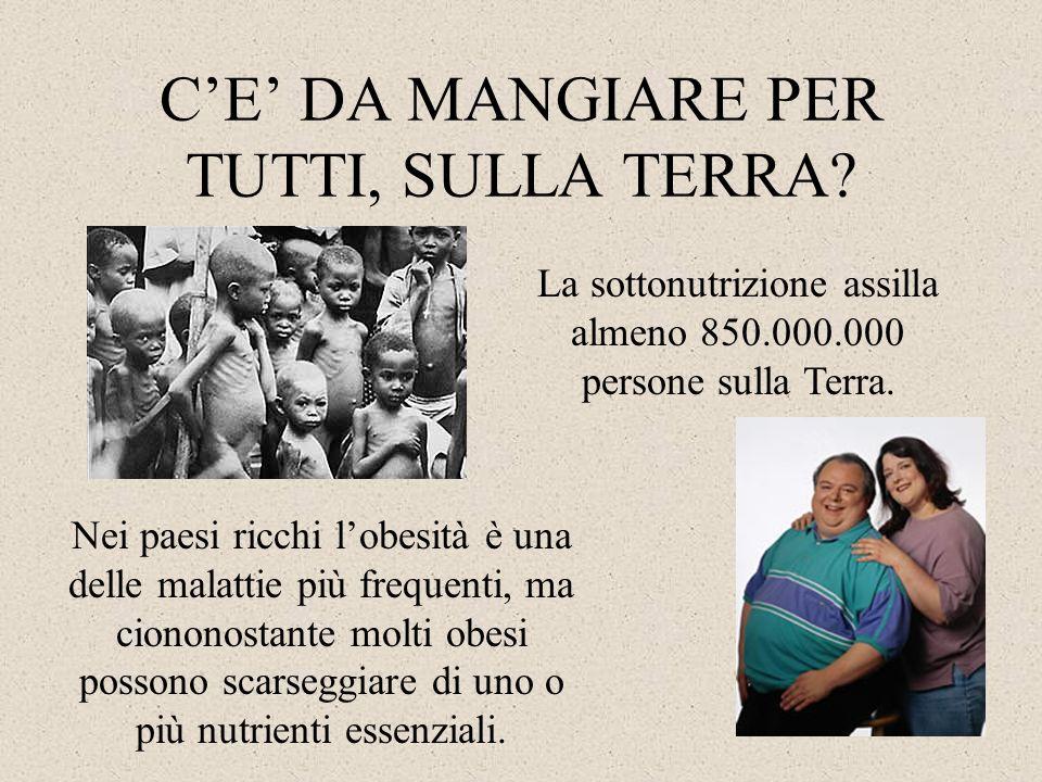 C'E' DA MANGIARE PER TUTTI, SULLA TERRA? La sottonutrizione assilla almeno 850.000.000 persone sulla Terra. Nei paesi ricchi l'obesità è una delle mal