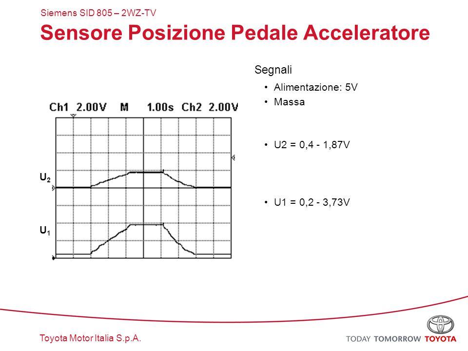 Toyota Motor Italia S.p.A. Sensore Posizione Pedale Acceleratore Segnali Alimentazione: 5V Massa U2 = 0,4 - 1,87V U1 = 0,2 - 3,73V U1U1 U2U2 Siemens S