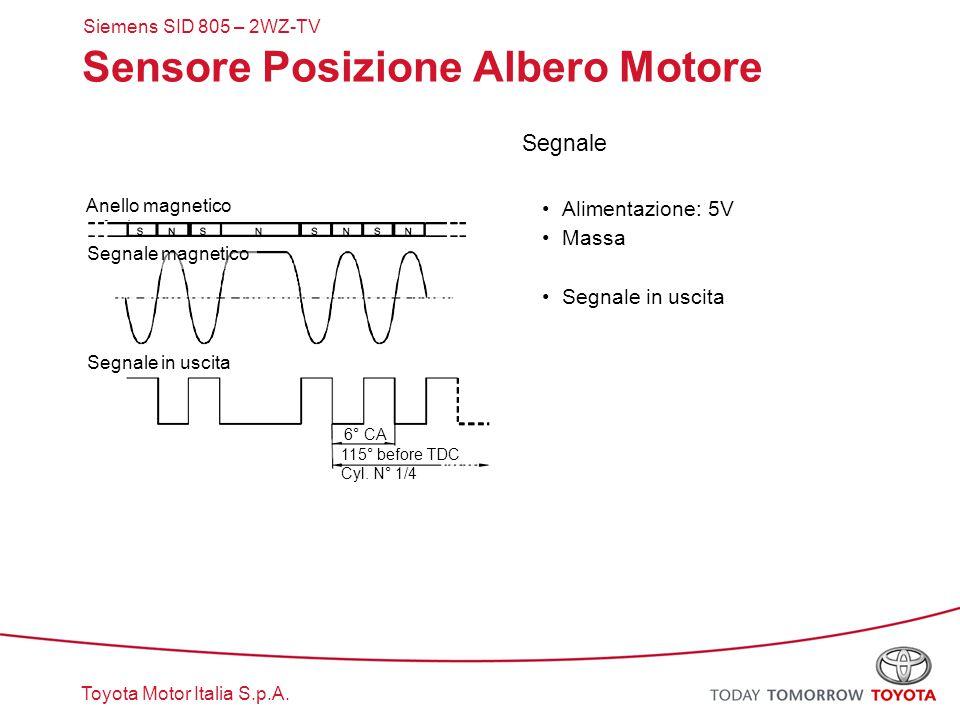 Toyota Motor Italia S.p.A. Sensore Posizione Albero Motore Segnale Alimentazione: 5V Massa Segnale in uscita 6° CA 115° before TDC Cyl. N° 1/4 Anello