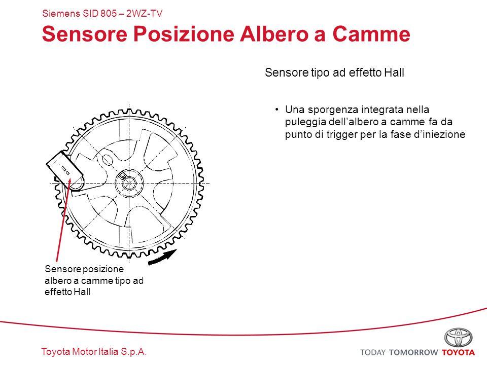 Toyota Motor Italia S.p.A. Sensore Posizione Albero a Camme Sensore tipo ad effetto Hall Una sporgenza integrata nella puleggia dell'albero a camme fa