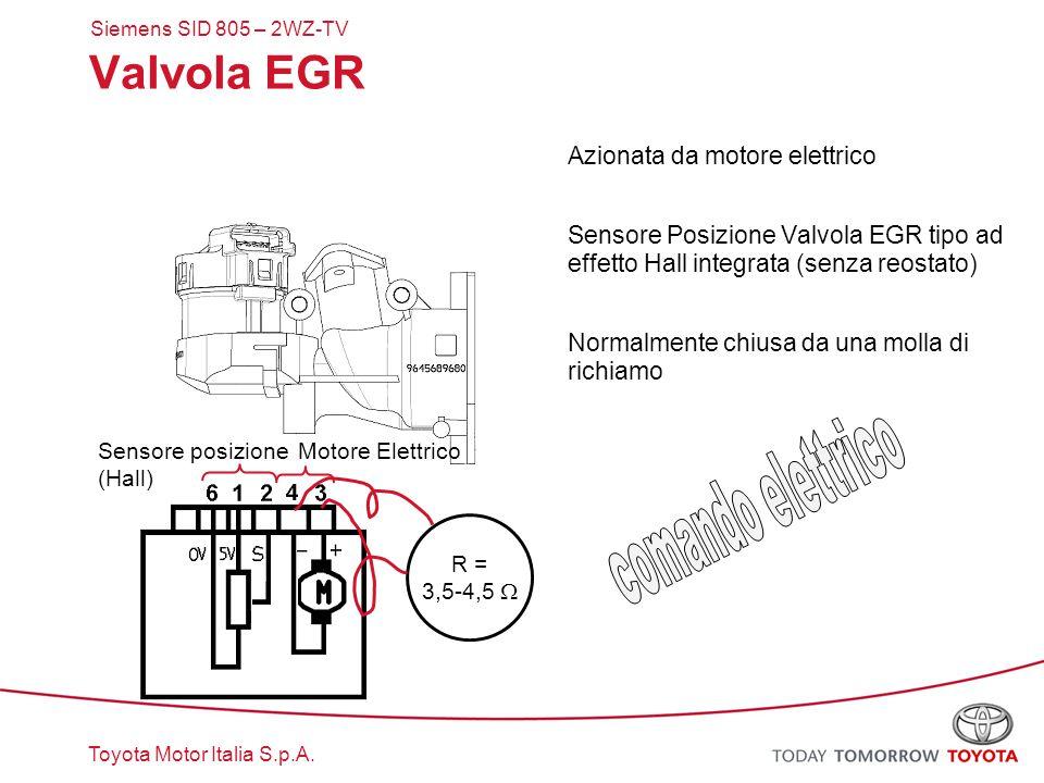 Toyota Motor Italia S.p.A. Sensore posizione (Hall) Valvola EGR Azionata da motore elettrico Sensore Posizione Valvola EGR tipo ad effetto Hall integr