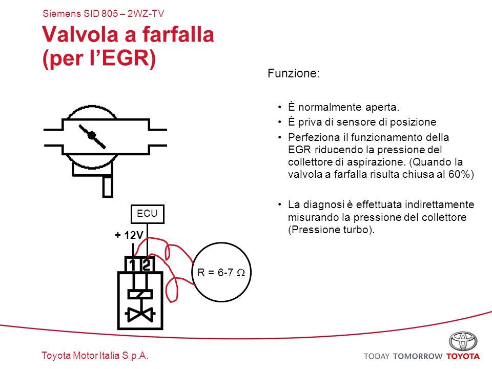 Toyota Motor Italia S.p.A. Valvola a farfalla (per l'EGR) Funzione: È normalmente aperta. È priva di sensore di posizione Perfeziona il funzionamento