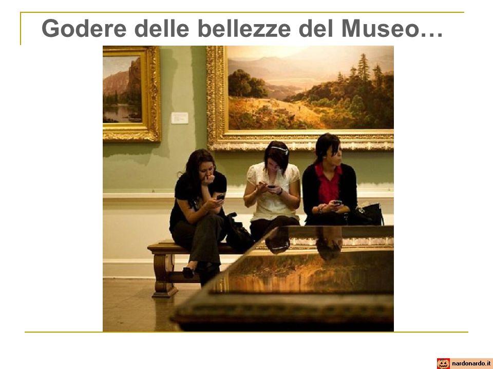 Godere delle bellezze del Museo…