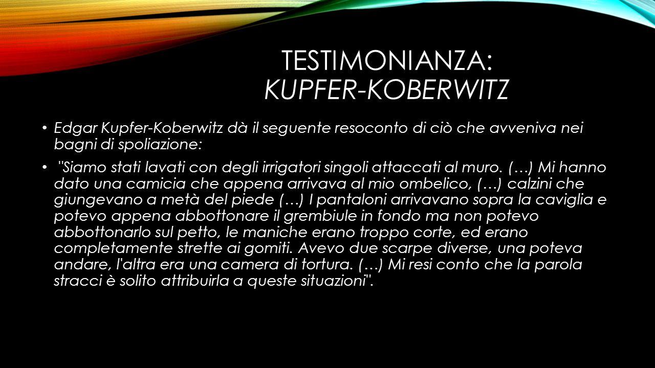 TESTIMONIANZA: KUPFER-KOBERWITZ Edgar Kupfer-Koberwitz dà il seguente resoconto di ciò che avveniva nei bagni di spoliazione: