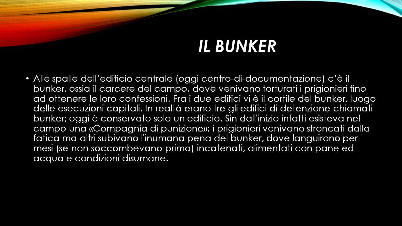 IL BUNKER Alle spalle dell'edificio centrale (oggi centro-di-documentazione) c'è il bunker, ossia il carcere del campo, dove venivano torturati i prig