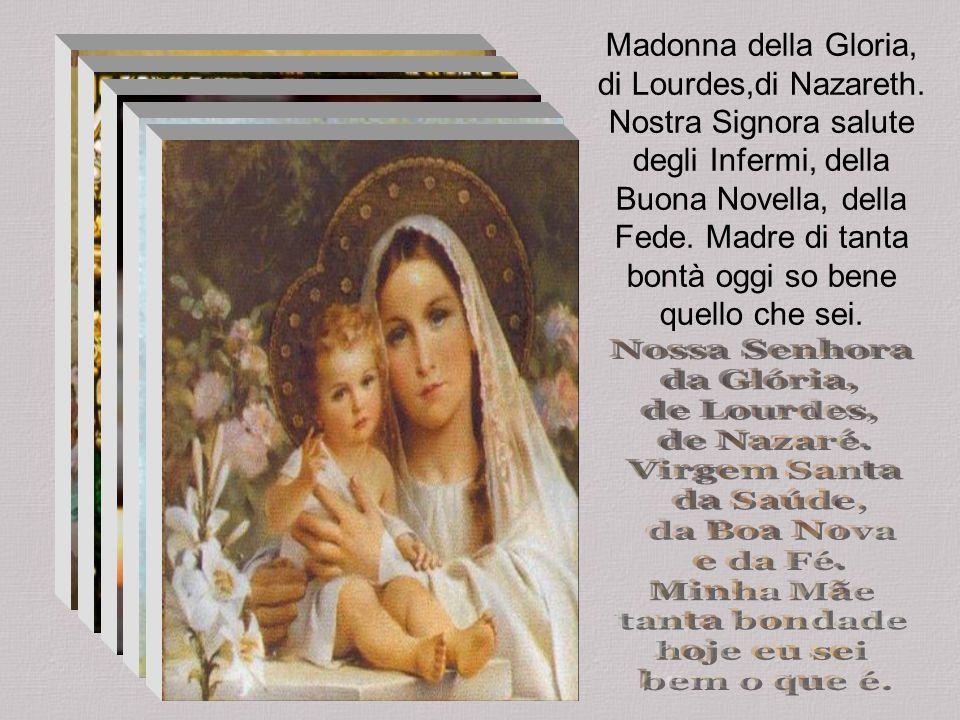 Nel Tuo giorno io sono un pellegrino nella folla, cara Madre. Tutti inginocchiati a pregare, la Madonna Aparecida.