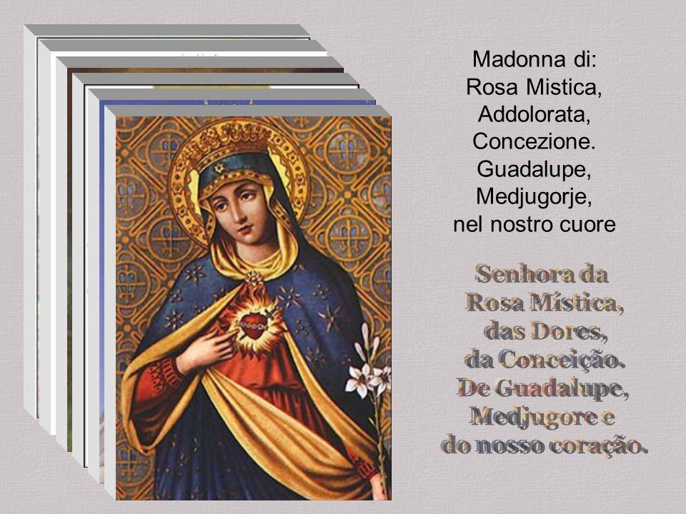 Madonna delle Grazie dacci fiducia e luce. Signora di Lampadosa prega per noi Gesù. Vergine Immacolata. Spirito Santo incantevole. Regina Madre vincen