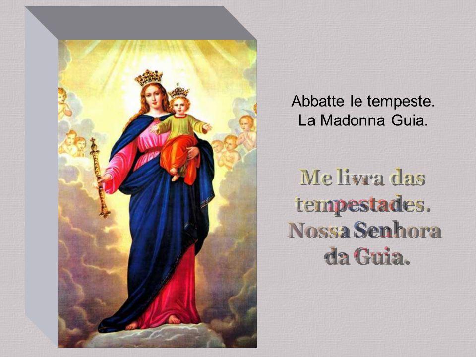 La Madonna dei Naviganti di Buon Viaggio mi guida. Nell'aria, a terre e nei mari mi sostiene, mi aiuta.