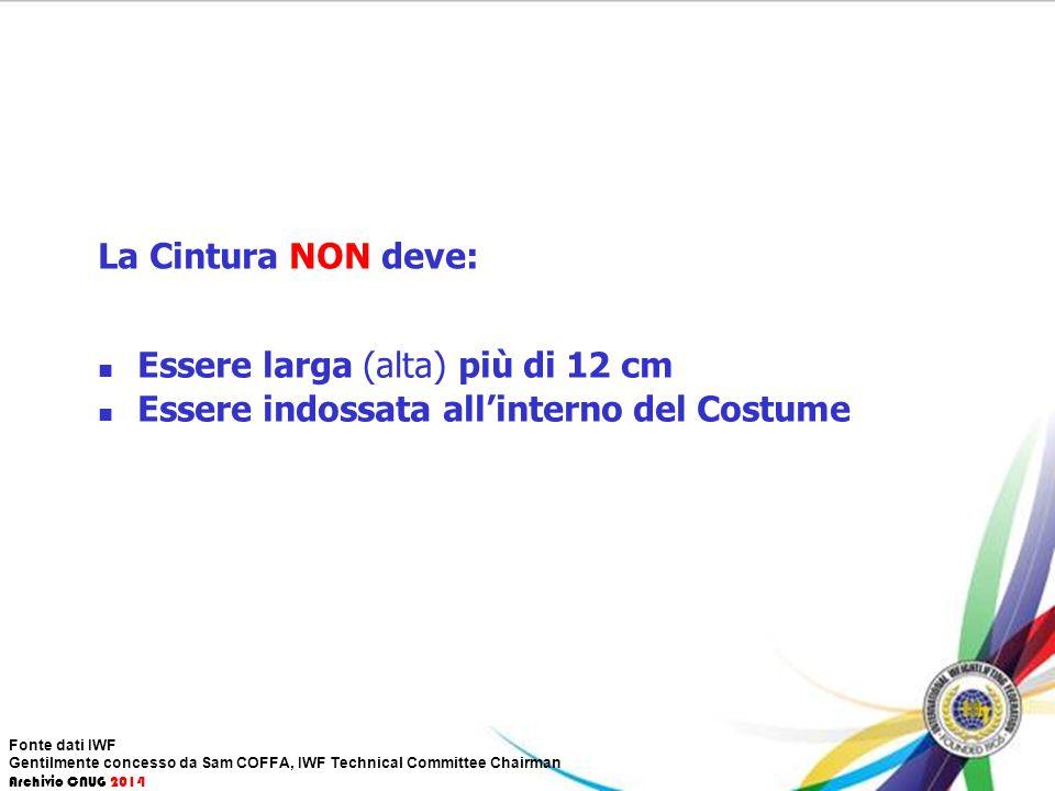 La Cintura NON deve: Essere larga (alta) più di 12 cm Essere indossata all'interno del Costume Fonte dati IWF Gentilmente concesso da Sam COFFA, IWF T