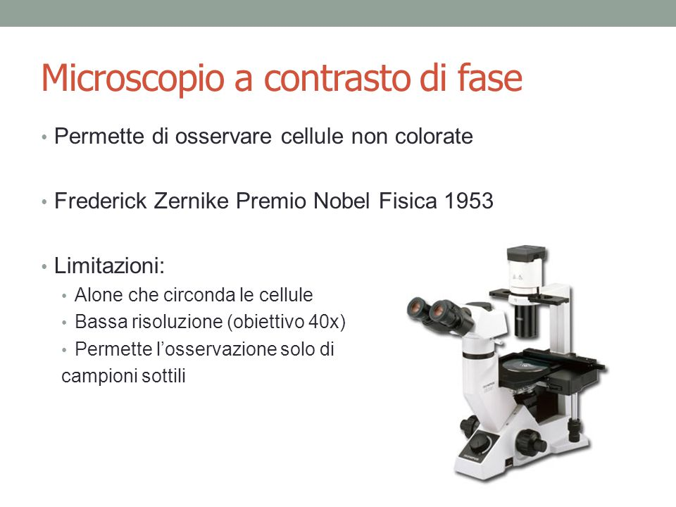 Microscopio a contrasto di fase Permette di osservare cellule non colorate Frederick Zernike Premio Nobel Fisica 1953 Limitazioni: Alone che circonda le cellule Bassa risoluzione (obiettivo 40x) Permette l'osservazione solo di campioni sottili