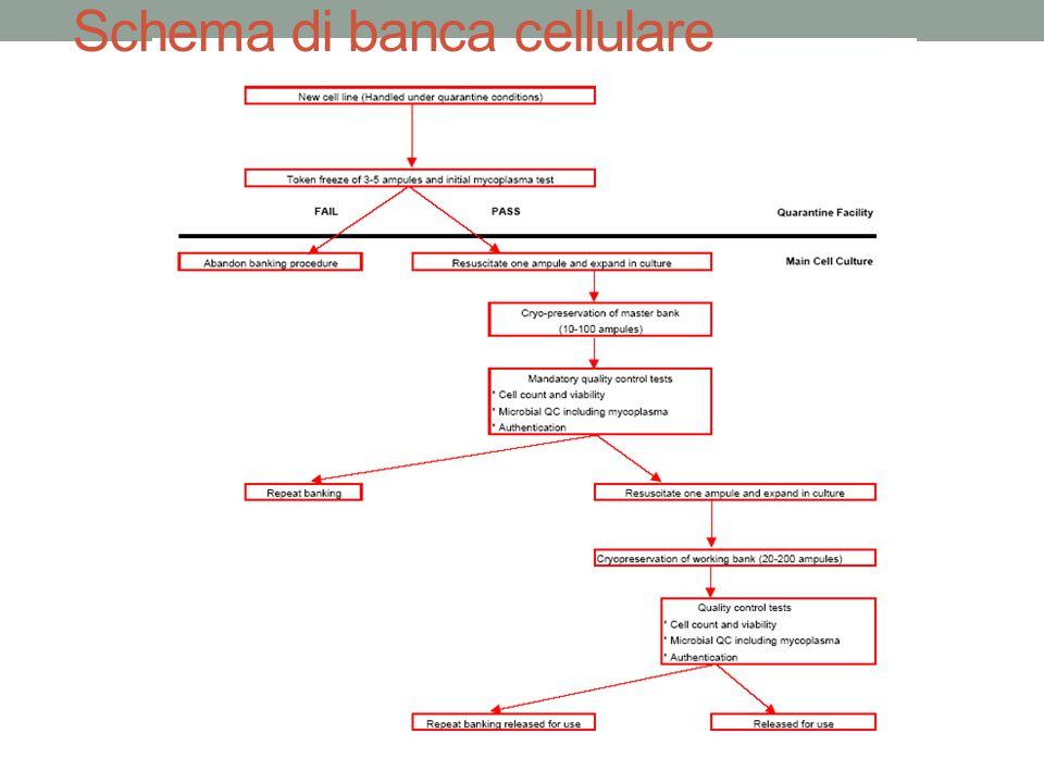 Schema di banca cellulare