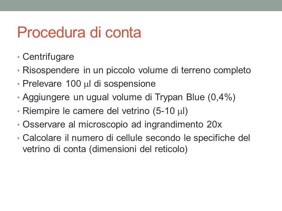 Procedura di conta Centrifugare Risospendere in un piccolo volume di terreno completo Prelevare 100  l di sospensione Aggiungere un ugual volume di T
