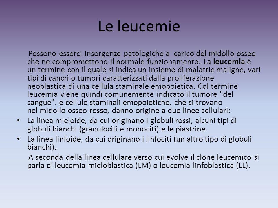 Le leucemie Possono esserci insorgenze patologiche a carico del midollo osseo che ne compromettono il normale funzionamento.