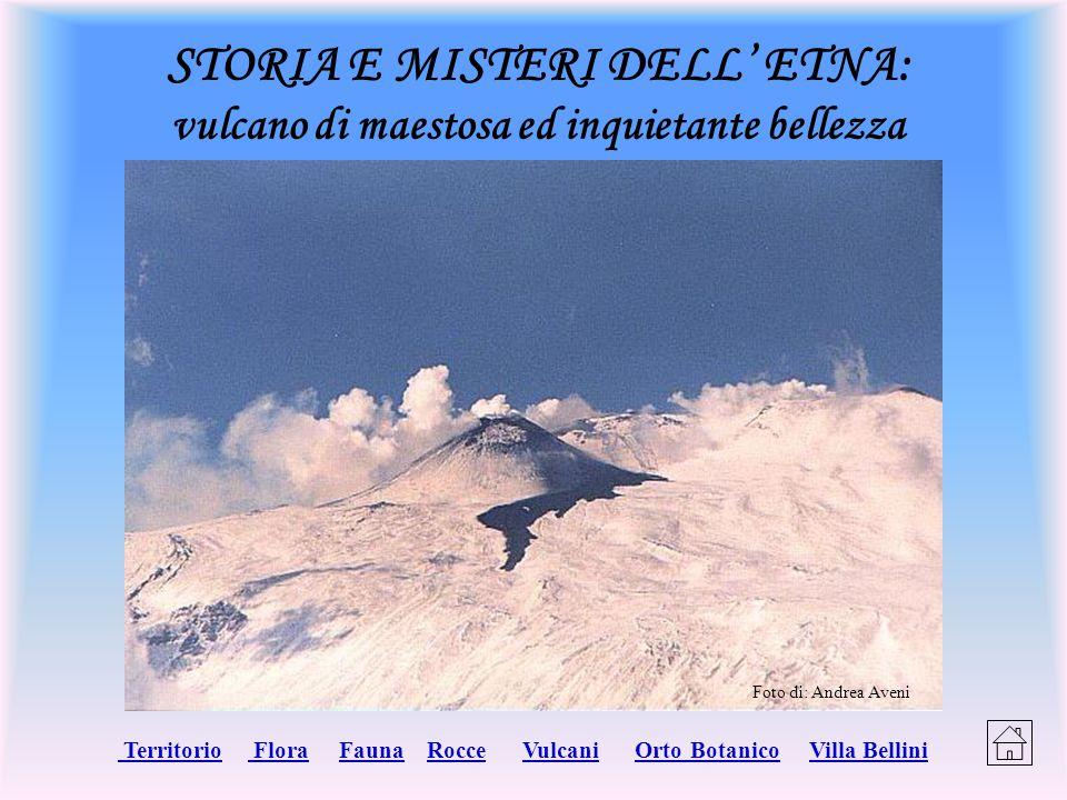 STORIA E MISTERI DELL' ETNA: vulcano di maestosa ed inquietante bellezza Territorio Territorio Flora Fauna Rocce Vulcani Orto Botanico Villa Bellini F