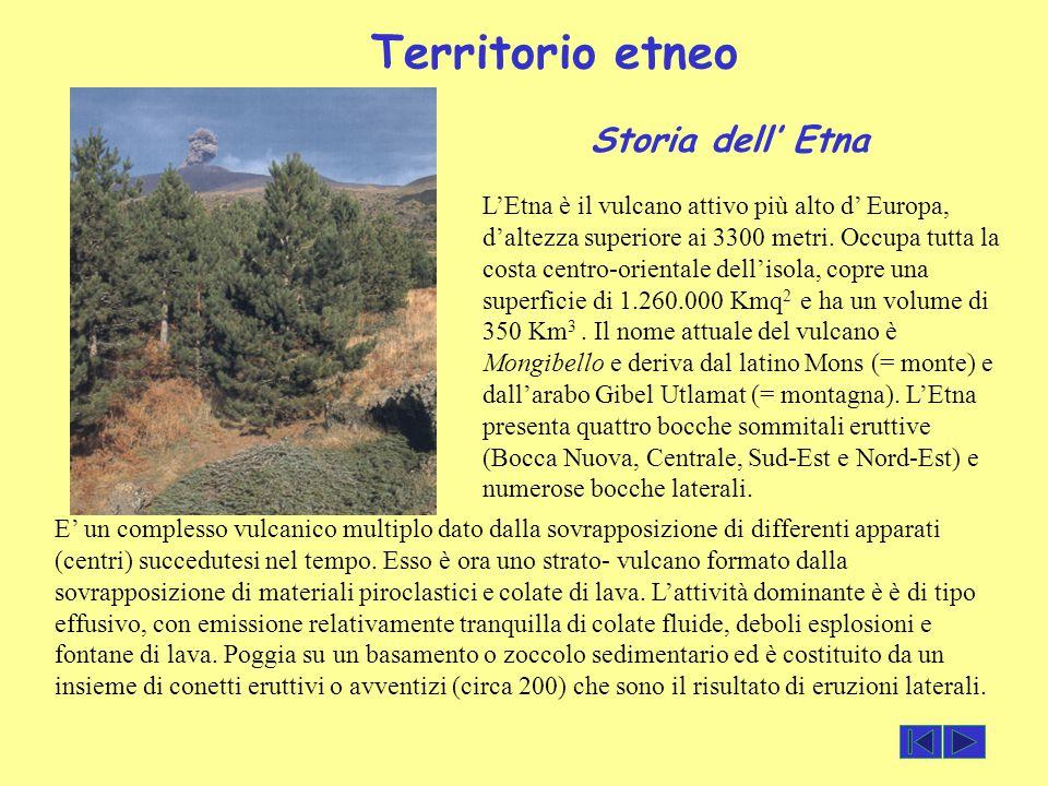 Territorio etneo L'Etna è il vulcano attivo più alto d' Europa, d'altezza superiore ai 3300 metri. Occupa tutta la costa centro-orientale dell'isola,