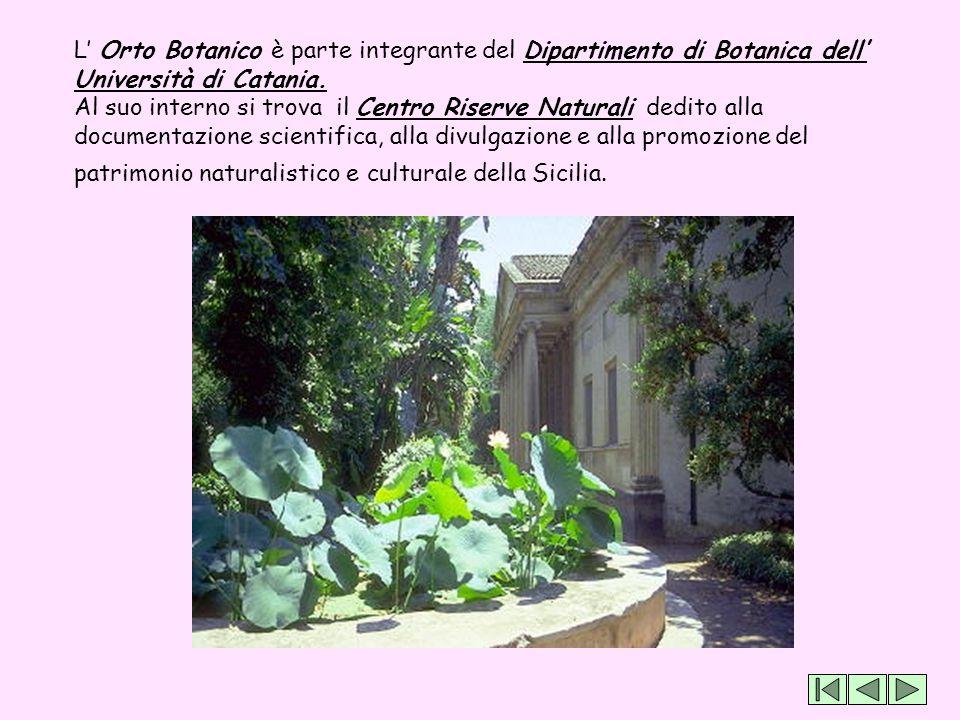 L' Orto Botanico è parte integrante del Dipartimento di Botanica dell' Università di Catania. Al suo interno si trova il Centro Riserve Naturali dedit