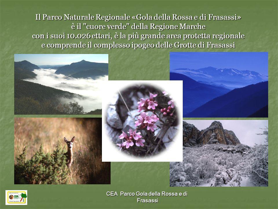 CEA Parco Gola della Rossa e di Frasassi Il Parco Naturale Regionale «Gola della Rossa e di Frasassi» è il
