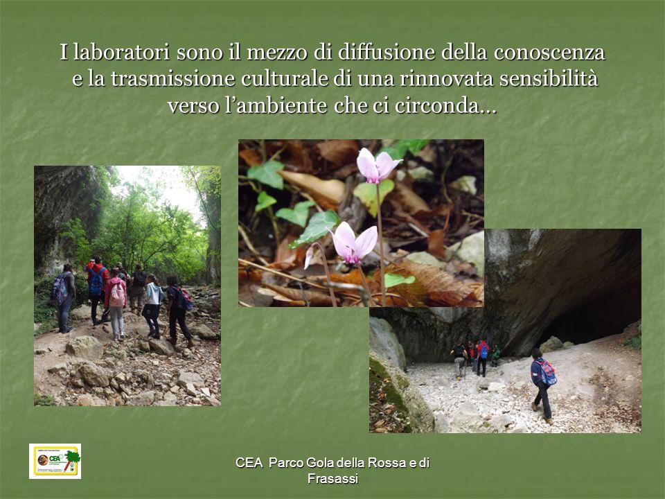 I laboratori sono il mezzo di diffusione della conoscenza e la trasmissione culturale di una rinnovata sensibilità verso l'ambiente che ci circonda…