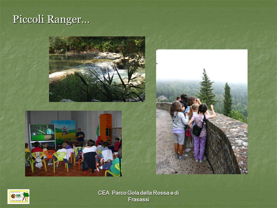 CEA Parco Gola della Rossa e di Frasassi Piccoli Ranger…