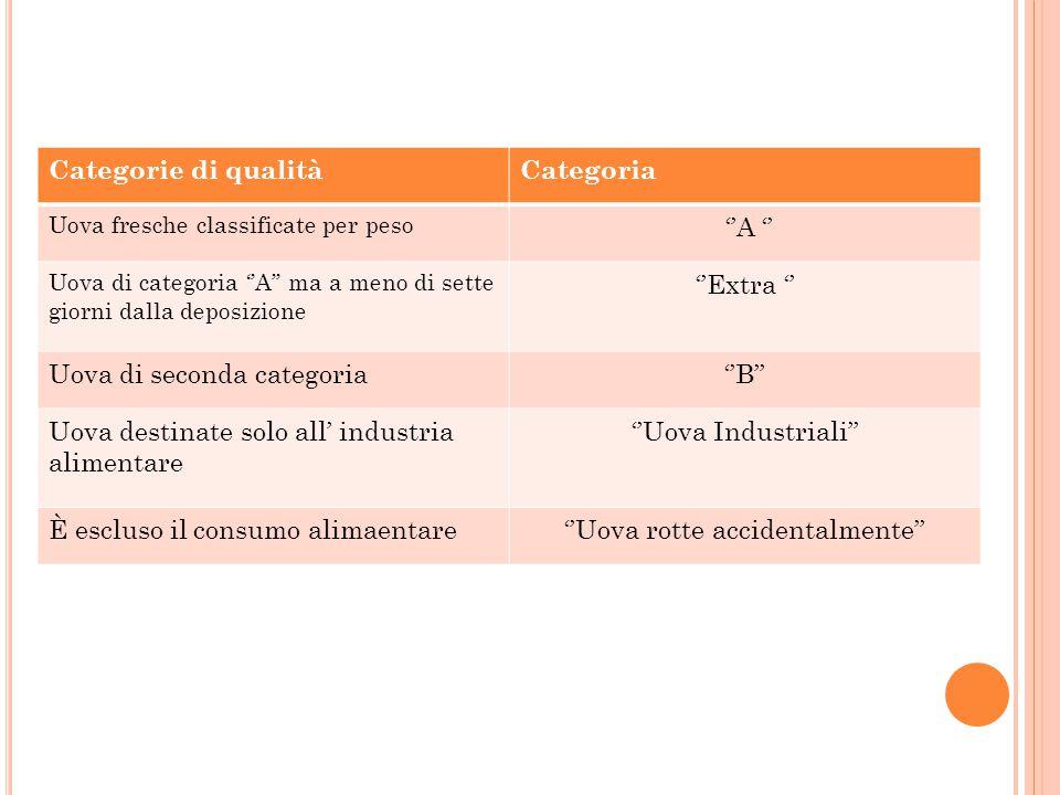 Categorie di qualitàCategoria Uova fresche classificate per peso ''A '' Uova di categoria ''A'' ma a meno di sette giorni dalla deposizione ''Extra ''