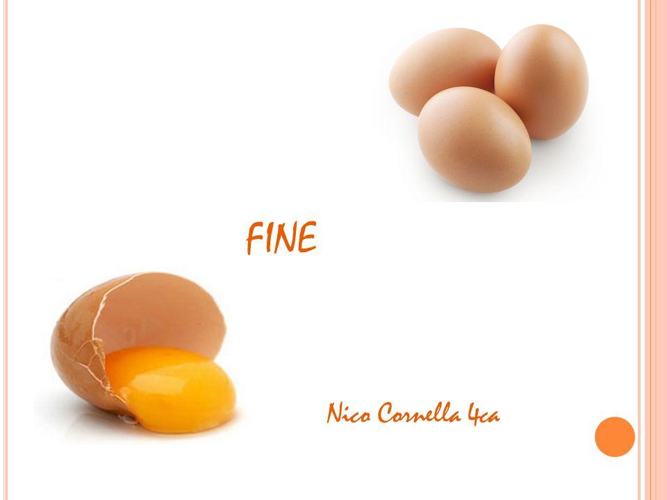 FINE Nico Cornella 4ca