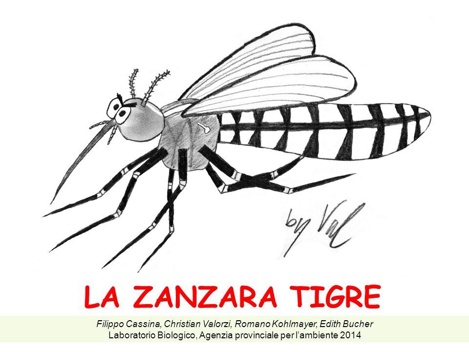 LA ZANZARA TIGRE Filippo Cassina, Christian Valorzi, Romano Kohlmayer, Edith Bucher Laboratorio Biologico, Agenzia provinciale per l'ambiente 2014