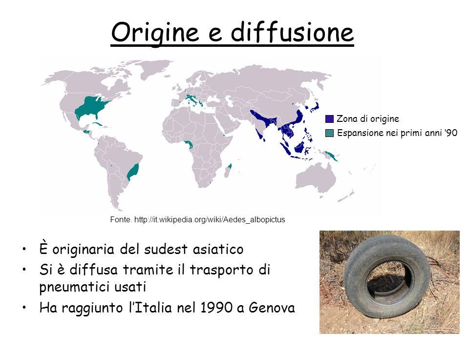 Origine e diffusione È originaria del sudest asiatico Si è diffusa tramite il trasporto di pneumatici usati Ha raggiunto l'Italia nel 1990 a Genova Fo