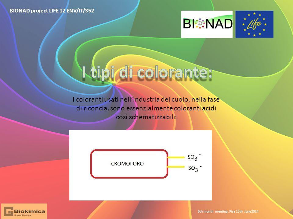 BIONAD project LIFE 12 ENV/IT/352 6th month meeting: Pisa 13th June2014 I coloranti usati nell'industria del cuoio, nella fase di riconcia, sono essenzialmente coloranti acidi così schematizzabili:
