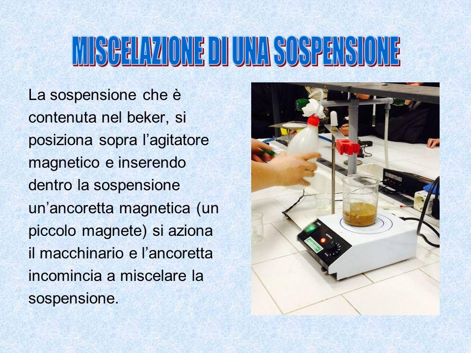 La sospensione che è contenuta nel beker, si posiziona sopra l'agitatore magnetico e inserendo dentro la sospensione un'ancoretta magnetica (un piccol