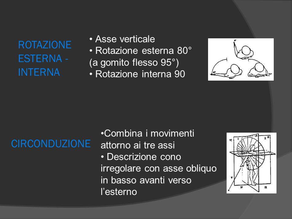 ROTAZIONE ESTERNA - INTERNA Asse verticale Rotazione esterna 80° (a gomito flesso 95°) Rotazione interna 90 Combina i movimenti attorno ai tre assi De
