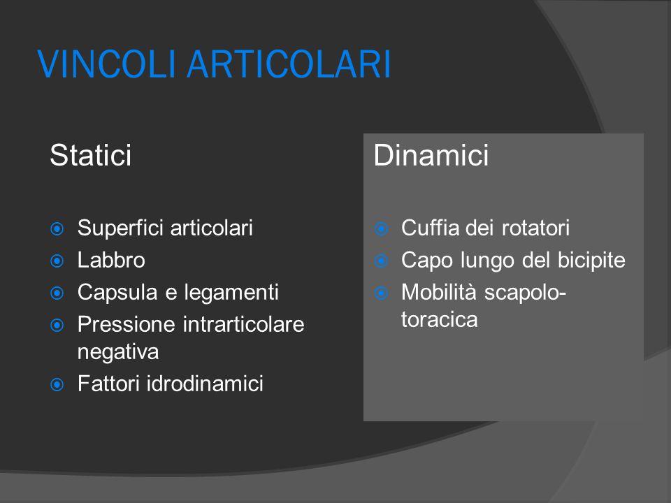 ARTICOLAZIONE SCAPOLO-TORACICA Nell'abduzione il rapporto di escursione articolare tra l'articolazione gleno-omerale e scapolo-toracica è 2:1 QUESTO RAPPORTO MANTIENE UN PIANO GLENOIDEO STABILE AL DI SOTTO DELLA TESTA OMERALE